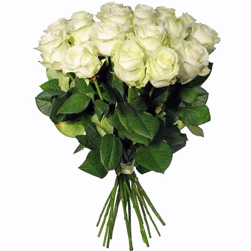 Цветы с доставкой 0 смартфон лучший подарок мужчине