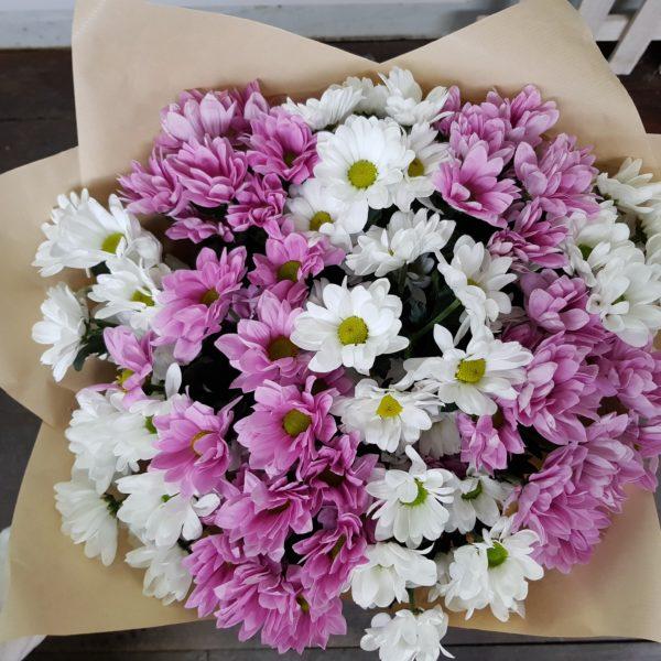 11 хризантем, с бесплатной доставкой по Пскову!