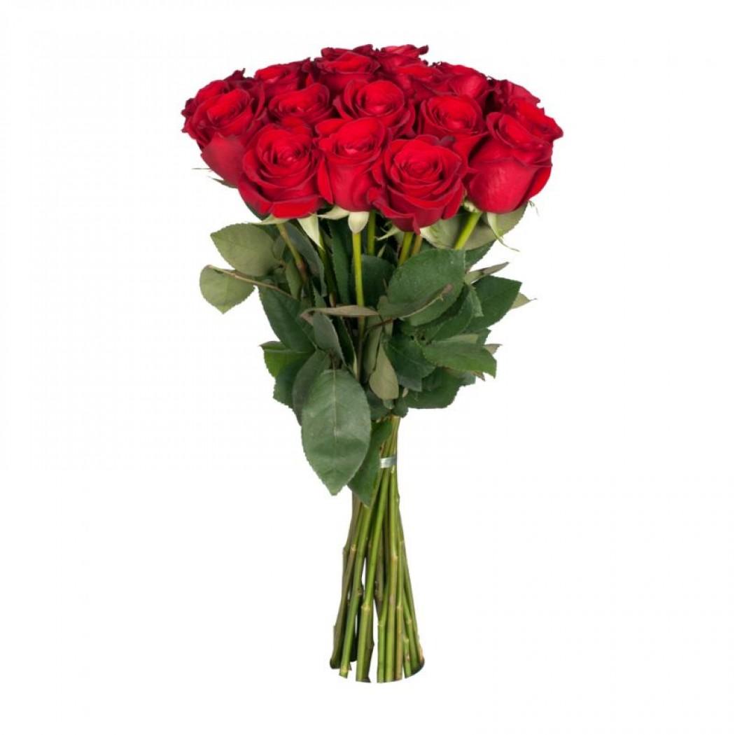 Купить красные розы, розы с доставкой