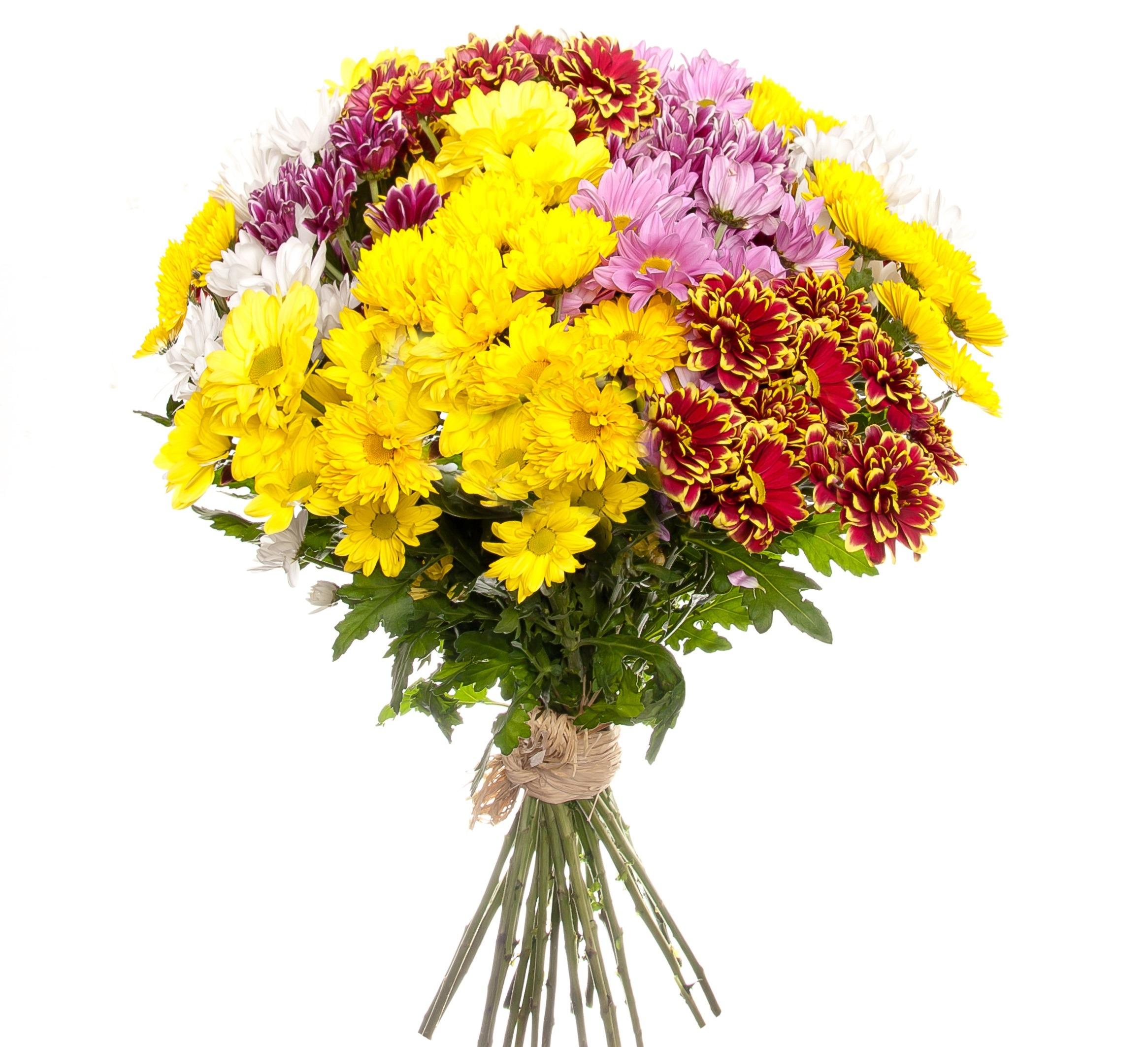 Букет из разных сортов хризантемы