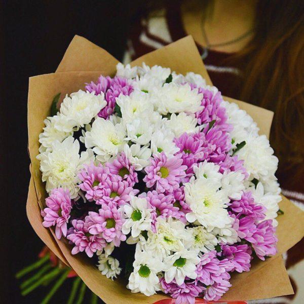 15 хризантем, с бесплатной доставкой по Пскову!
