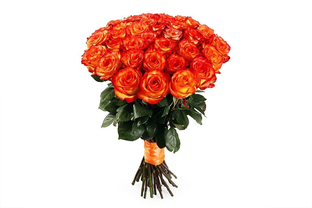 Купить желтые розы, купить 19 роз, купить розы с доставкой., доставка роз