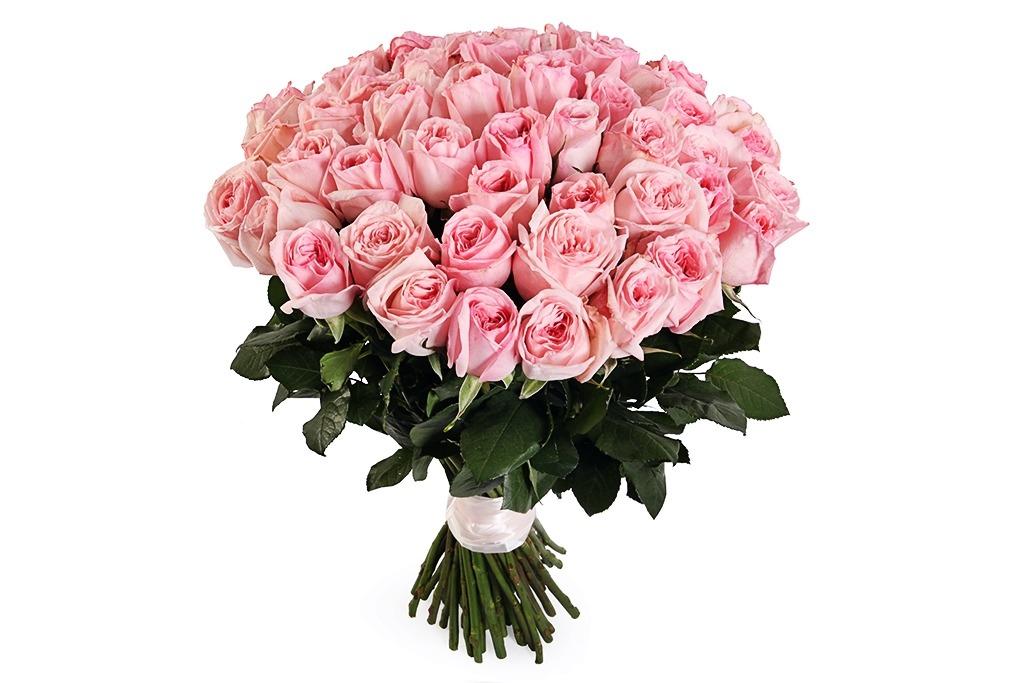 Почтой подарки, 502 штуки розовые розы букеты