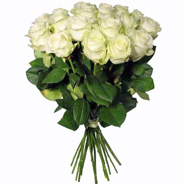 Доставка роз Псков, купить 25 роз Псков, купить розы с доставкой Псков, купить цветы Псков.