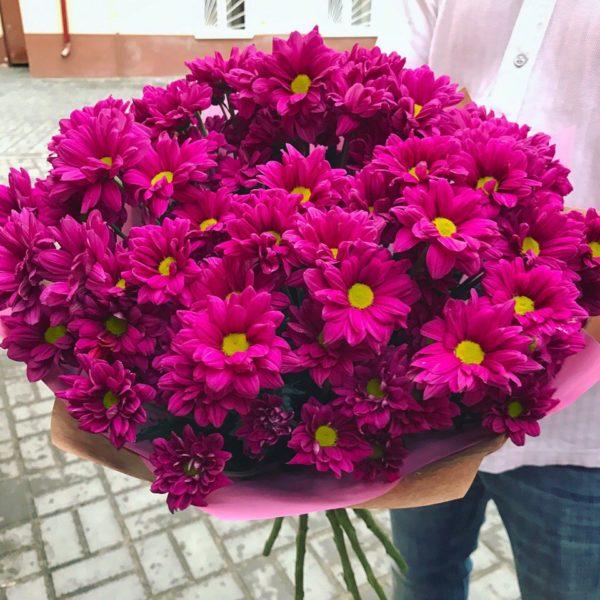 9 хризантем, с бесплатной доставкой по Пскову!